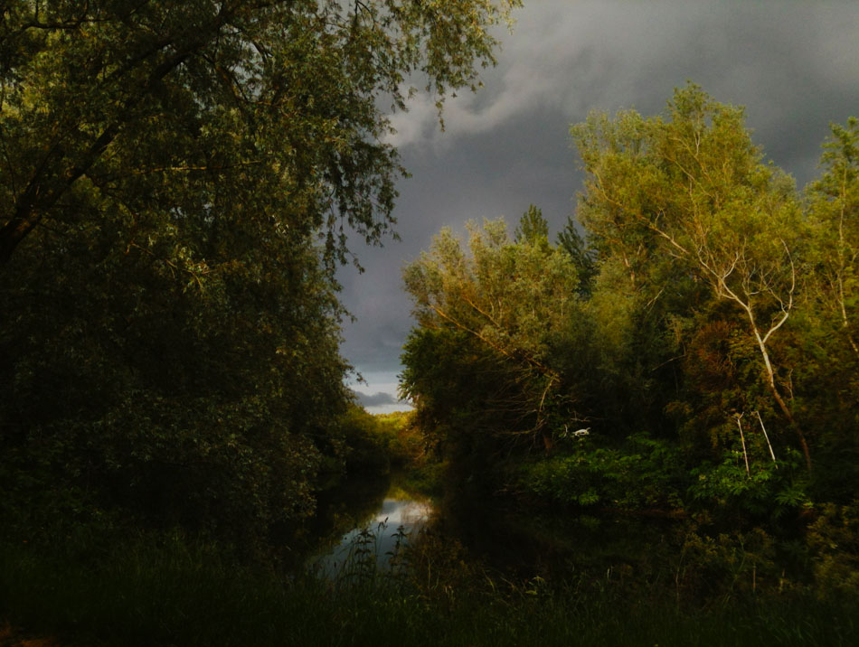 Photograph of the Lagan Tow Path , Northern Ireland, by Stephen Bradley photographer - photograph 2508 photo icon.