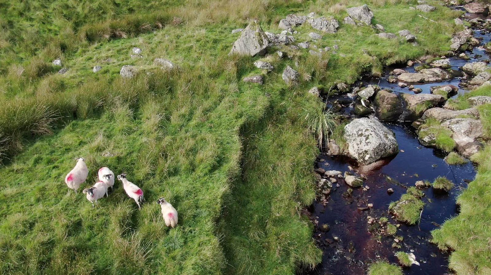 Aerial drone photography and video production services Dublin and Ireland portfolio - screenshot 2 of Cushendun video